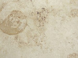 Limestone: Jura Beige Honed